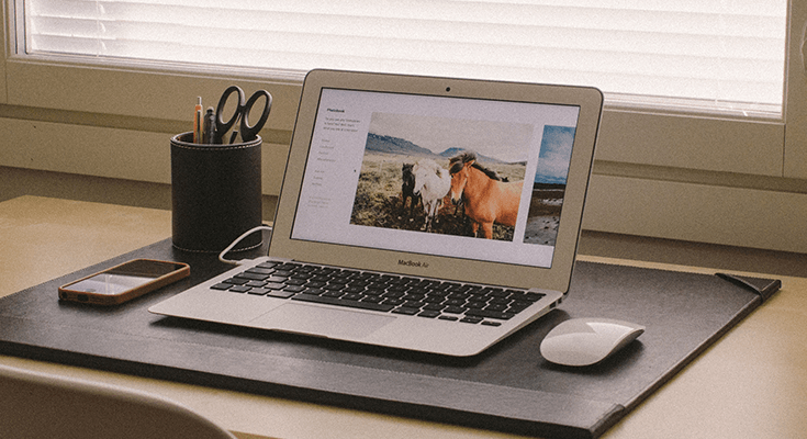 4 Simple Tips to Make your Website Disability-Friendly
